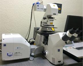 형광용 공초점 레이저 주사 현미경
